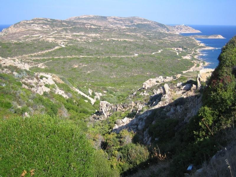retour de vacances la Corse magnifique  - Page 2 Img_1019