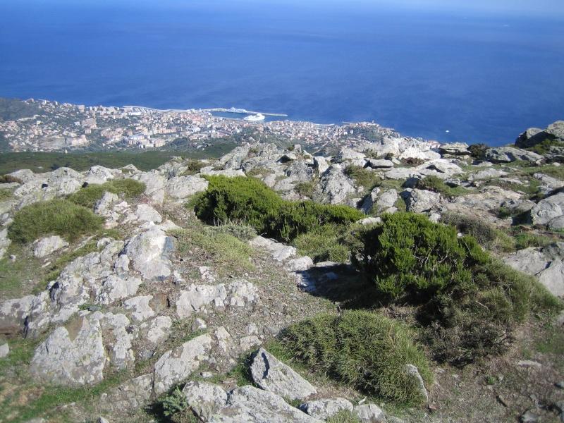 retour de vacances la Corse magnifique  - Page 2 Img_1110