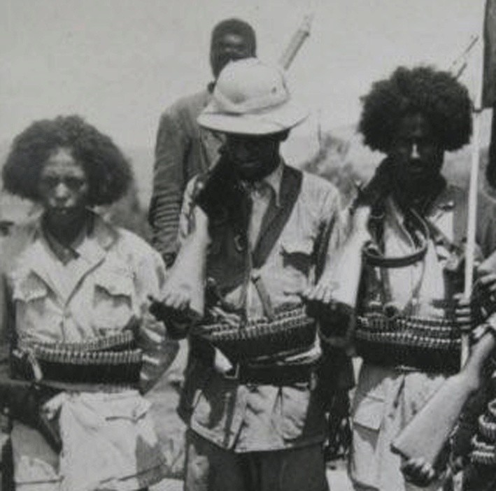 Abyssinian patriot army Abyssi10