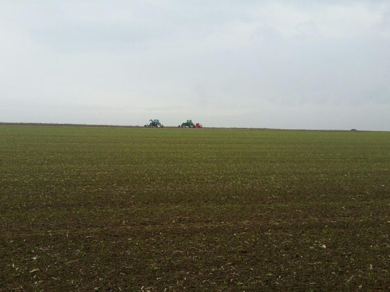 Debut des semis de blé Couac_10