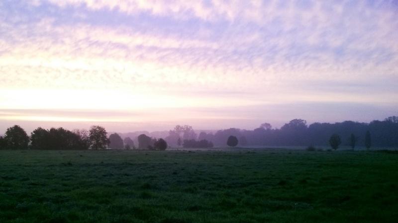 ma vue ,chaque matin au lever du soleil . Wp_20110
