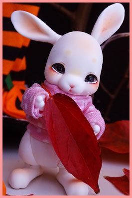 Rukiya's Dolls MAJ 14/10 ~Happy Halloween !~ p33 Pocki10