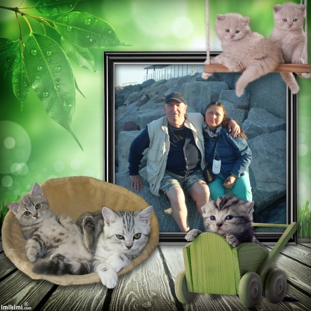 Montage de ma famille - Page 2 1d3vz-31