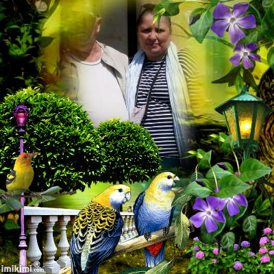 Montage de ma famille - Page 2 2zxda190
