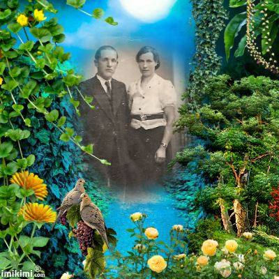 Montage de ma famille - Page 2 2zxda192