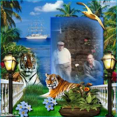 Montage de ma famille - Page 2 2zxda194