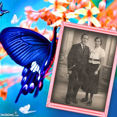 Montage de ma famille - Page 2 2zxda217