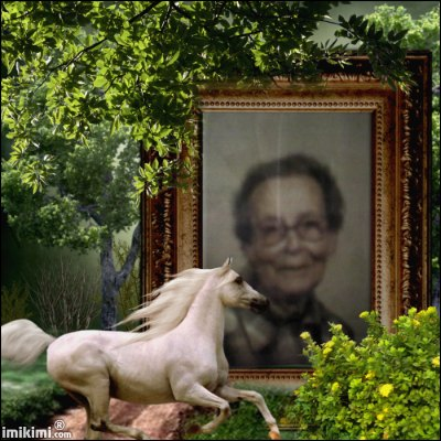 Montage de ma famille - Page 2 2zxda220