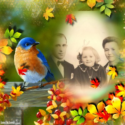 Montage de ma famille - Page 2 2zxda231