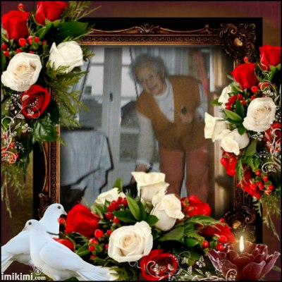 Montage de ma famille - Page 2 2zxda250