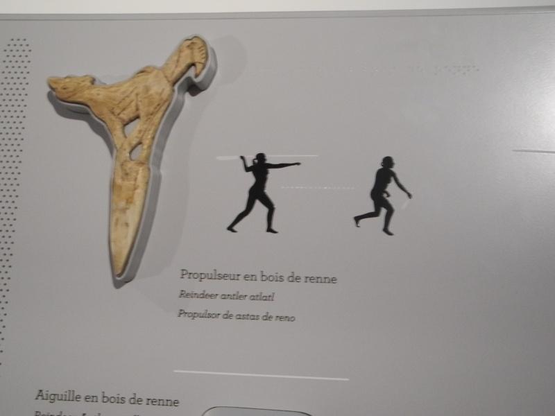 Réouverture du musée de l'Homme - Page 2 Dscn0314