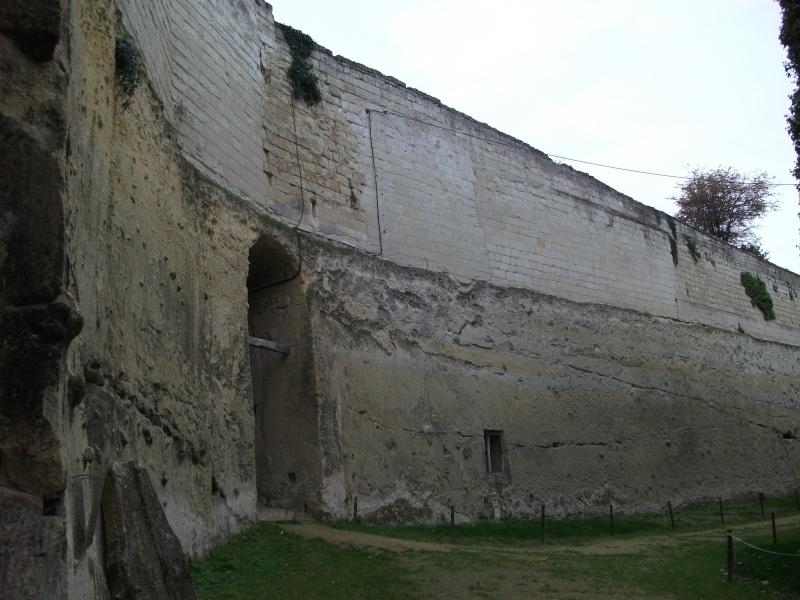 Le château de Brézé Images19
