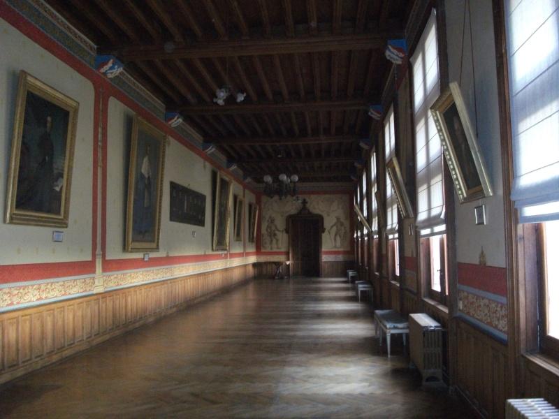 Le château de Brézé Images27