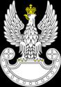 Les Forces Armées Polonaises/Polish Armed Forces - Page 23 424px-11