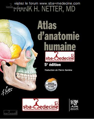 [résolu]atlas d'anatomie humaine (5E EDITION)  pdf gratuit lien marche Atlas_10