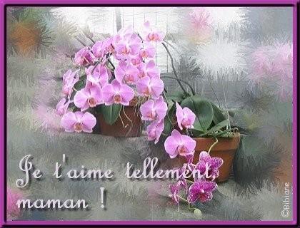 """"""" 31 Mai = 31ème Prière """" Mois de Marie offrons à notre Maman du ciel une petite couronne """" Maman_11"""