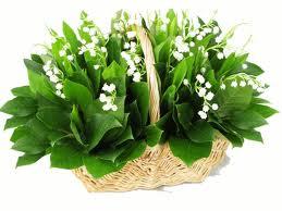 """"""" 31 Mai = 31ème Prière """" Mois de Marie offrons à notre Maman du ciel une petite couronne """" Muguet16"""