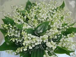 """"""" 31 Mai = 31ème Prière """" Mois de Marie offrons à notre Maman du ciel une petite couronne """" Muguet21"""