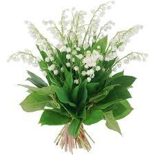 """"""" 31 Mai = 31ème Prière """" Mois de Marie offrons à notre Maman du ciel une petite couronne """" Muguet22"""
