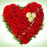 """"""" 31 Mai = 31ème Prière """" Mois de Marie offrons à notre Maman du ciel une petite couronne """" Rose_c10"""