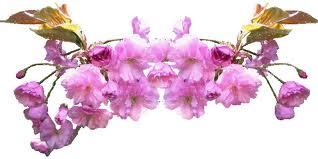 """"""" 31 Mai = 31ème Prière """" Mois de Marie offrons à notre Maman du ciel une petite couronne """" Separa11"""