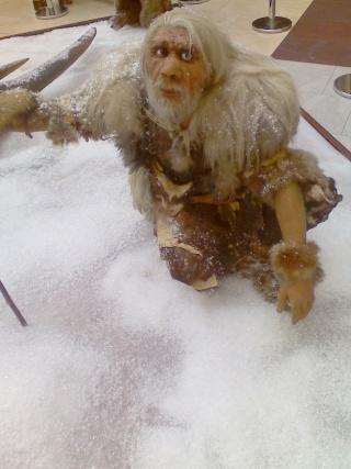 paléoanthropologie Homme de néandertal Néandertaliens homo néanderthalensis extinction Russie Byzovaya CNRS conditions extrême extinction remise en question forum mai 2011