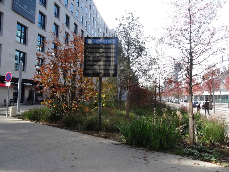 Avenue Emile Zola Dsc02418