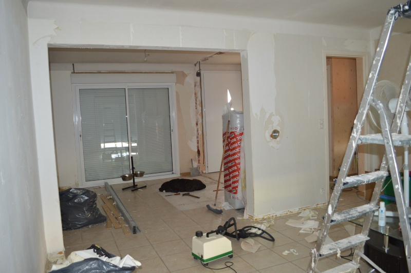Rénovation de notre maison pièce/pièce Dsc_0215