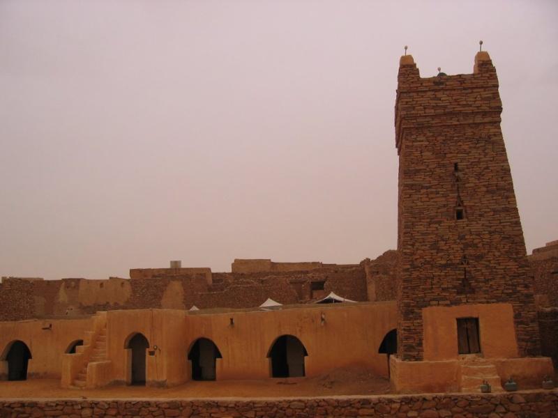 Oualata, un jardin au Sahara Chingu10