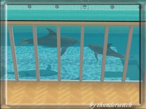 Все для аквариумов, водоемов Image39