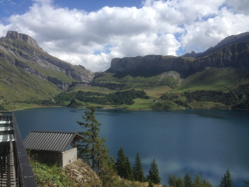 Entre les Alpes, le Jura et les Bauges - Page 3 Img_8511
