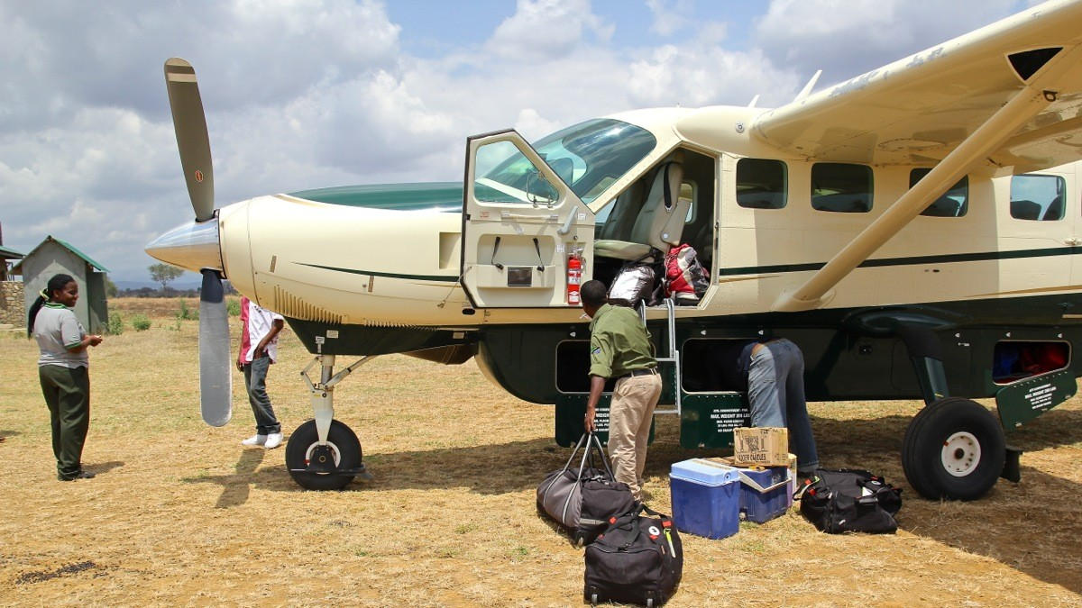Vols de brousse en Tanzanie .     Img_4521
