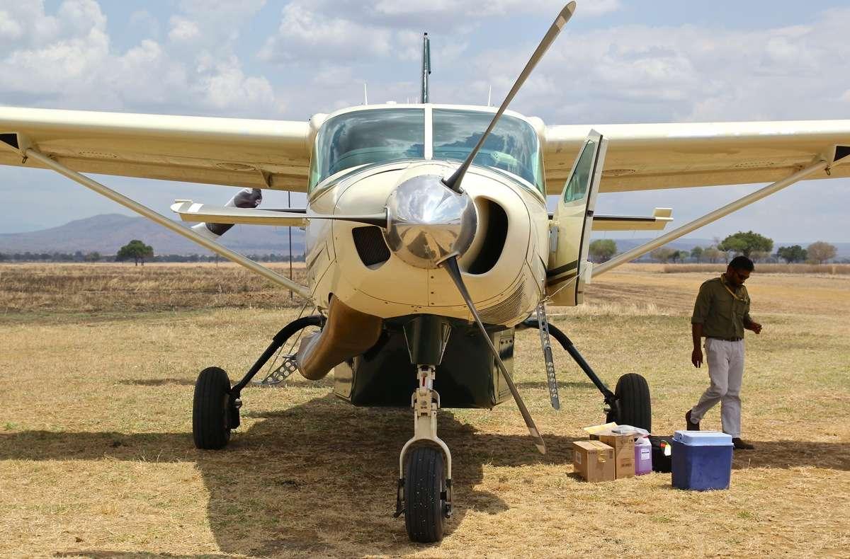 Vols de brousse en Tanzanie .     Img_4523