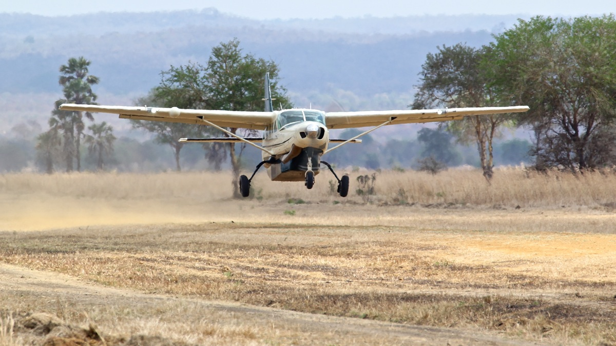 Vols de brousse en Tanzanie .     Img_4527