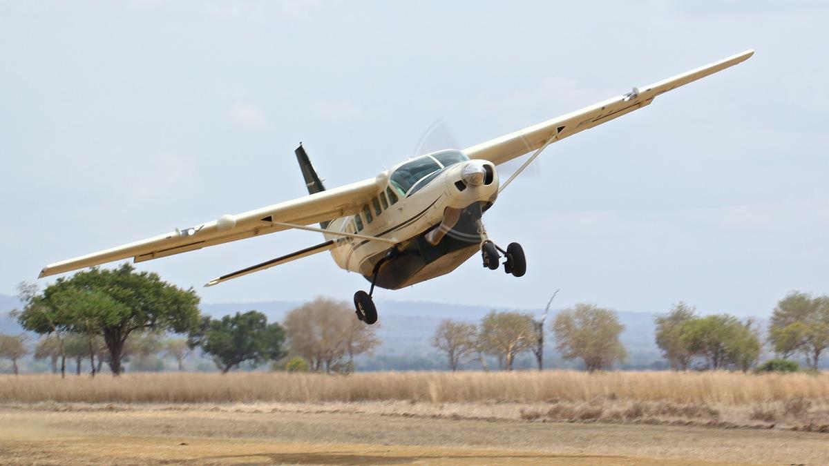 Vols de brousse en Tanzanie .     Img_4528