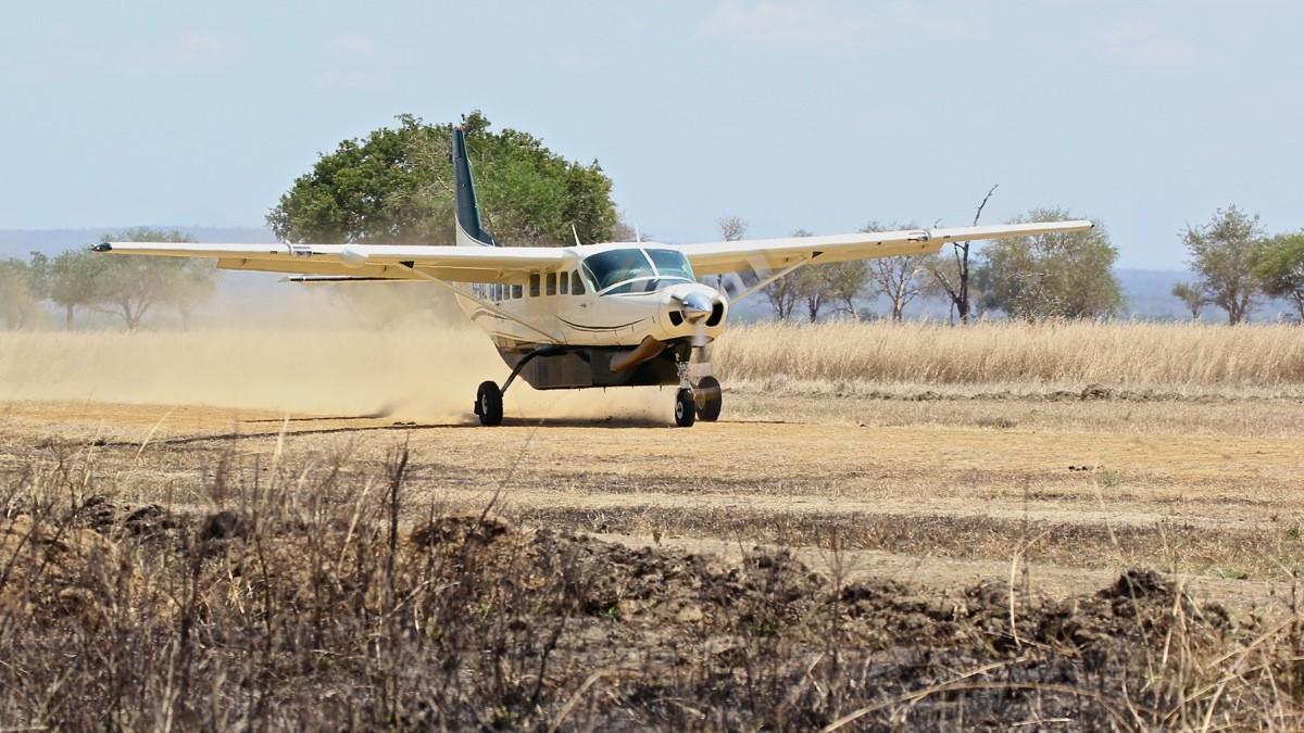 Vols de brousse en Tanzanie .     - Page 2 Img_4711