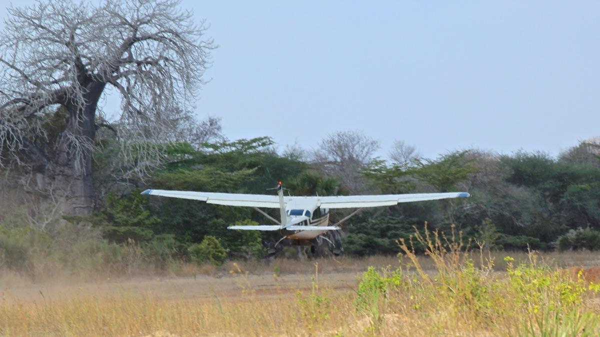 Vols de brousse en Tanzanie .     - Page 5 Img_5423