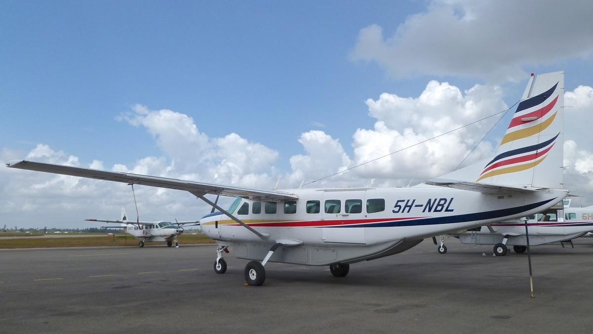 Vols de brousse en Tanzanie .     P1040411