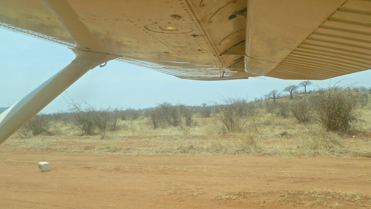 Vols de brousse en Tanzanie .     - Page 4 P1040511