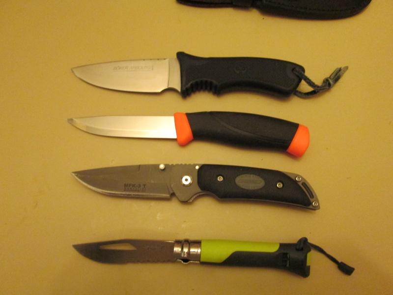 Avis dague sangliers/chevreuils - Page 2 01_00210