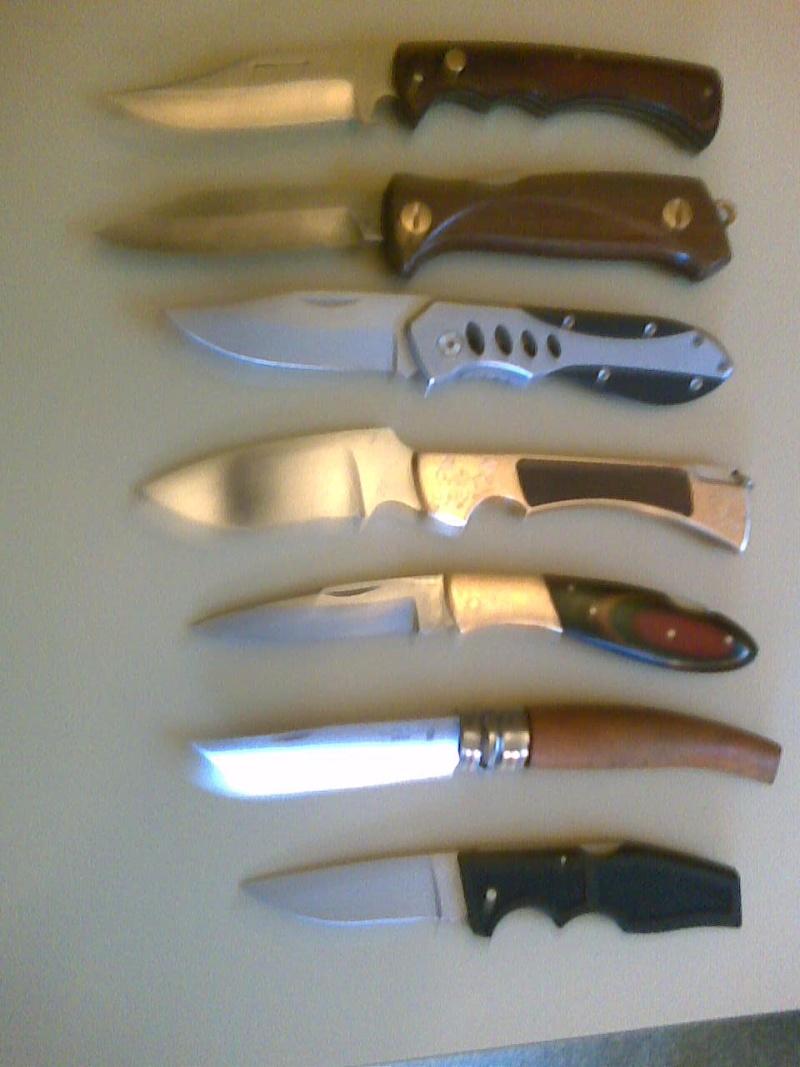 Avis dague sangliers/chevreuils - Page 2 Photo010