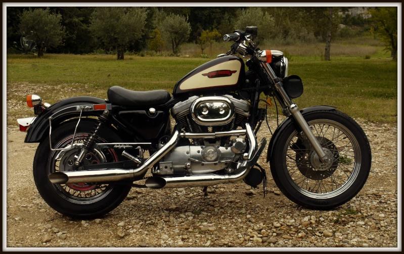 En 883... combien sommes nous sur le Forum Passion-Harley - Page 14 P1130710