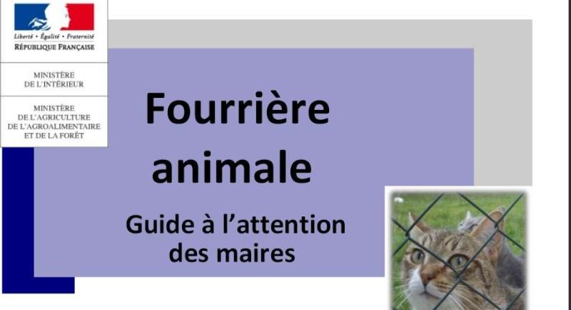 IDENTIFICATION des animaux de compagnie - REGLEMENTATION + LIEN I.CAD Sans_t35