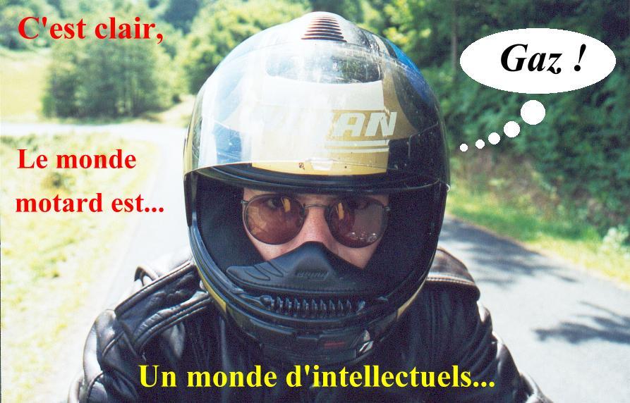 Les 5 catégorie de motards (modifier) Motard11