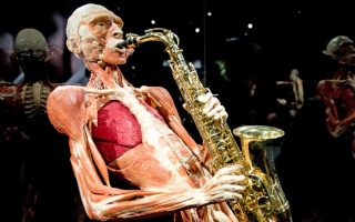Body Worlds : a controversial exhibition in Amsterdam Potd-g10