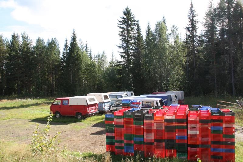 เก็บผลไม้ป่าสวีเดนและฟินแลนด์  Img_5618