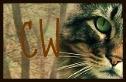 Partenariat avec Cat's Warriors Laguer10