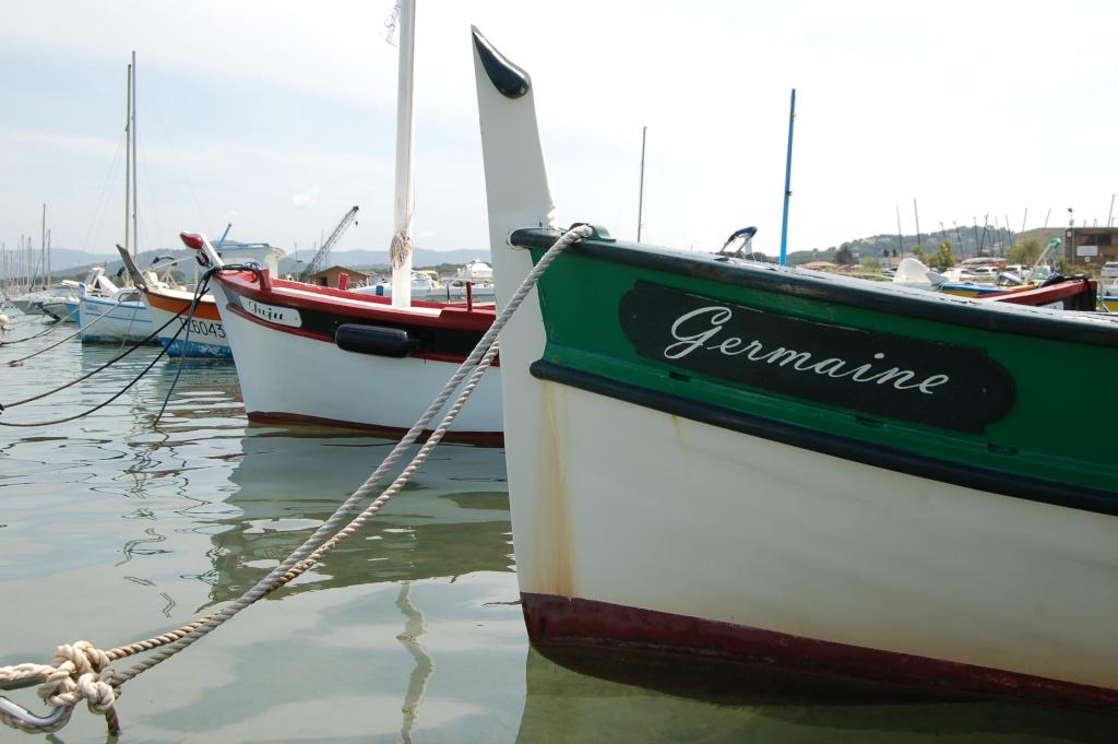 Germaine...... Dsc_0929
