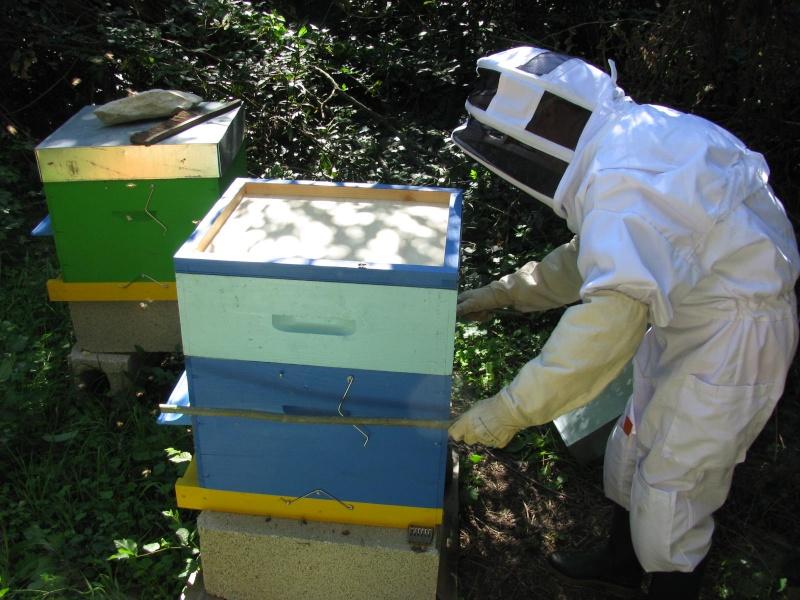 Visite au rucher de Nathalie Img_8114