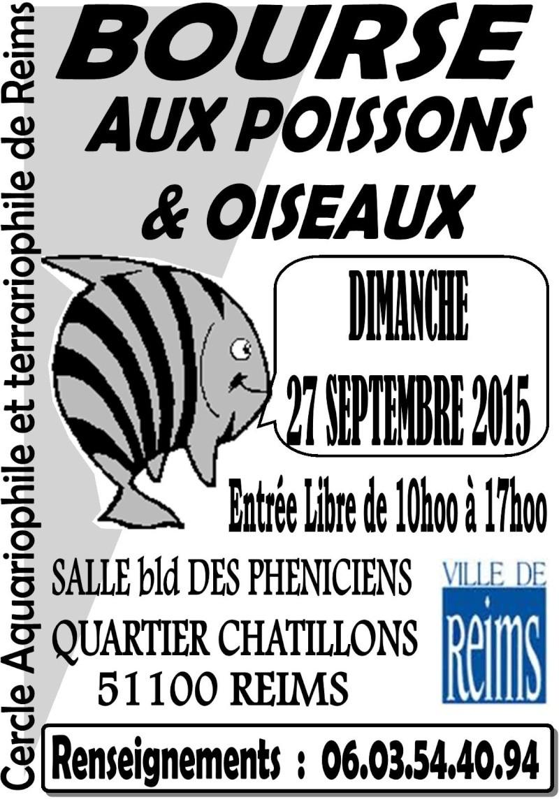 BOURSE aux POISSONS et OISEAUX à REIMS (51) - 27 Sept 2015 27sept10